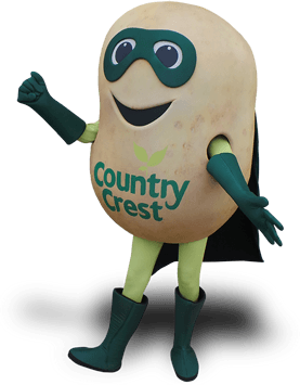 potato mascot costume