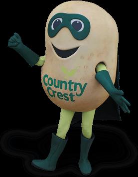 potato mascot costume